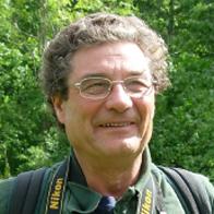Giovanni breschi